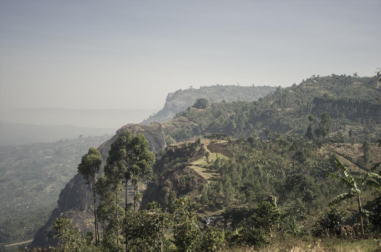 Gibuzaale - Mt. Elgon, Uganda